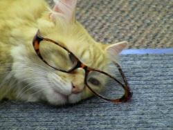 Crash with glasses