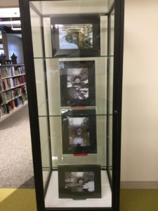 Cabinet display of photography by Robin Cumberland